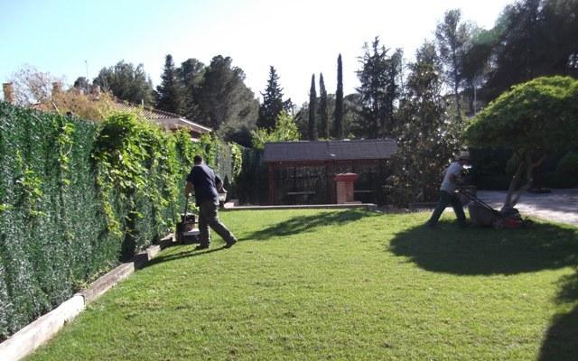 Mantenimientos de jardines en Zaragoza