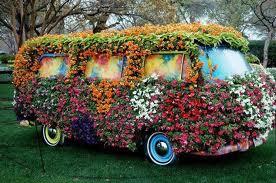 flor coche