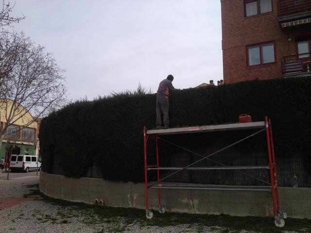 Mantenimiento Jardines Zaragoza 11 Soler Y Romero Jardineria