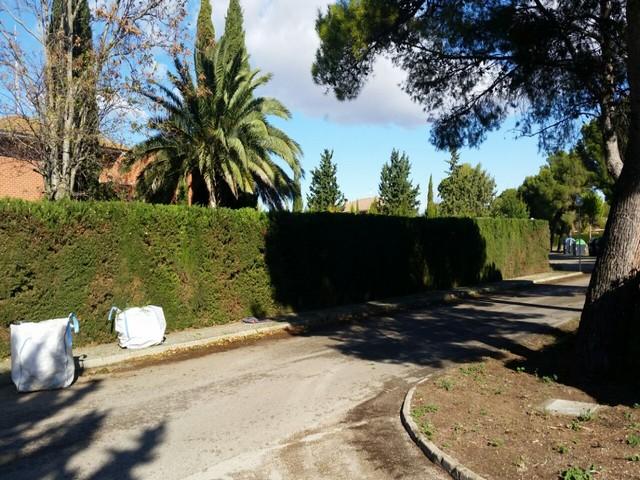 Mantenimiento jardines zaragoza 18 soler y romero jardineria for Mantenimiento jardines