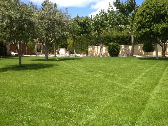 Mantenimiento jardines zaragoza 21 soler y romero jardineria for Mantenimiento jardines