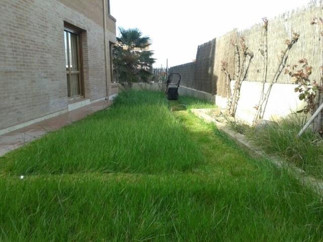 Tareas de jardiner a en enero soler y romero jardiner a - Tareas de jardineria ...