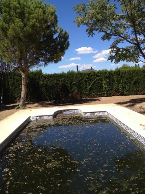 Piscinas zaragoza 16 soler y romero jardineria for Piscinas climatizadas zaragoza