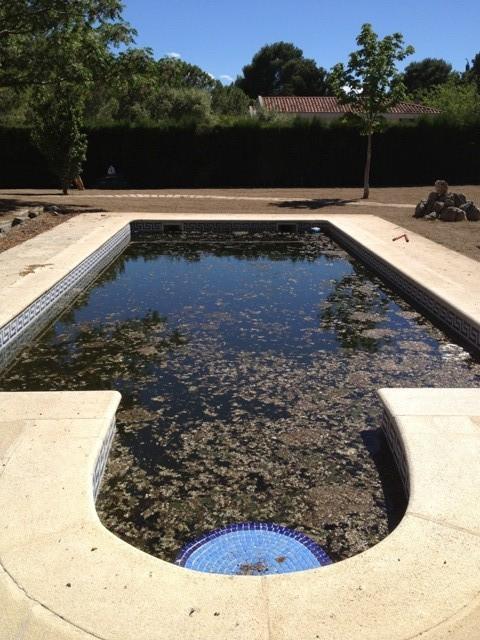 Piscinas zaragoza 17 soler y romero jardineria for Piscinas climatizadas zaragoza
